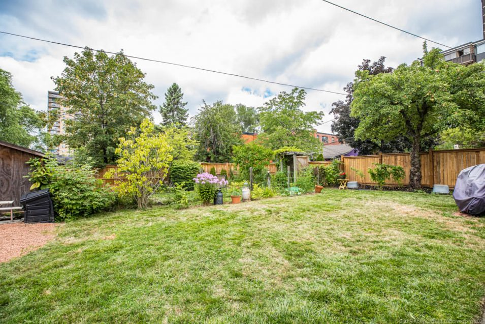 Backyard at 164 Duke Street, Hamilton